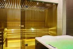 stekljannye-peregorodki-dlja-sauny-11