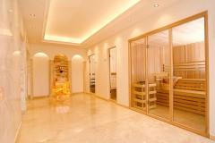 stekljannye-peregorodki-dlja-sauny-16