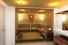 stekljannye-peregorodki-dlja-sauny-3
