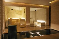 stekljannye-peregorodki-dlja-sauny-5